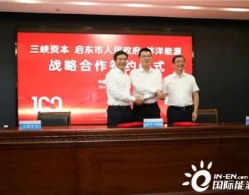 """响应""""整县推进"""",三峡资本、启东市政府、林洋能源三方签订战略合作协议"""