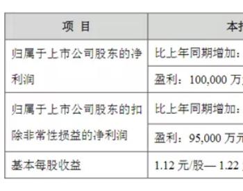 上半年净利预超10亿!恩捷股份湿法隔膜产销稳步增
