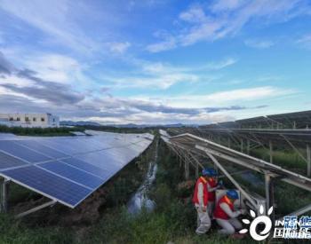 浙江东阳:积极推进光伏项目 让清洁能源进入千家