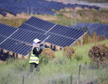 鄂尔多斯:光伏发电场亮相采煤沉陷区