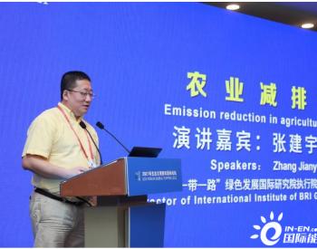 张建宇:打铁还需自身硬 要加强国内碳市场建设
