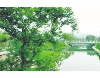 成都市龙泉驿芦溪河流域水环境综合整治项目环评