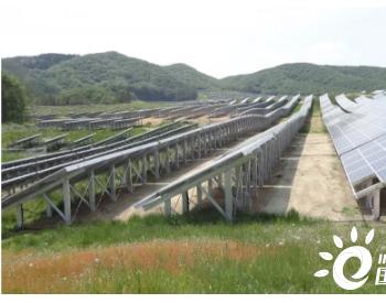 晶科能源助力国际企业在日光伏项目建设