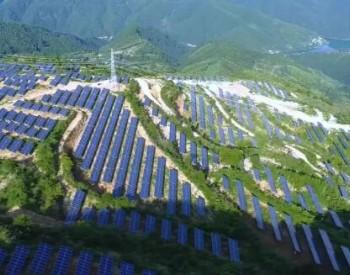 分布式光伏发电项目可以申领绿证吗?(全文解答绿