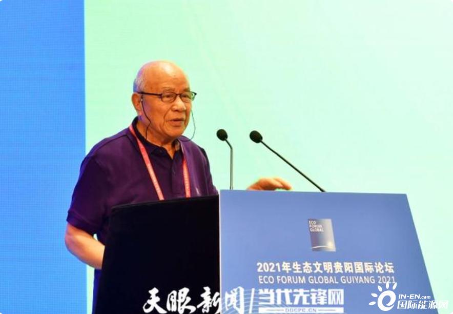 中国工程院院士倪维斗:生物质能潜能巨大-国际新能源网