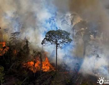 由于人为引发的山火,亚马逊雨林的二氧化碳排放量