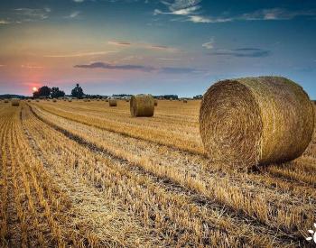 <em>生物质能源</em>助推碳中和+乡村振兴战略落实