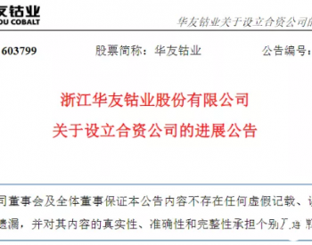 <em>华友钴业</em>印尼合资公司新进展,亿纬亚洲持股17%