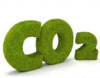 携手迈向碳中和 共绘发展新图景
