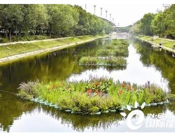 天津市:实施水生态修复工程 河道水质颜值双提升