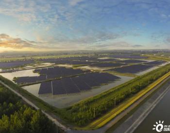 通威牵头的中国首个碳中和<em>团体标准</em>诞生!