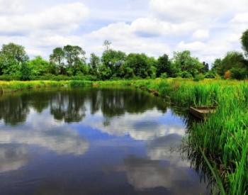 贵州省威宁县林业生态建设与产业发展规划
