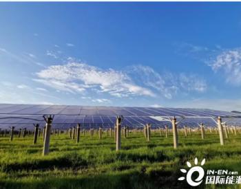 每年碳减18万吨!大组件+华为智能光伏助力湖北农光建设