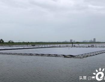新加坡巨大的浮动太阳能电池板为其水处理厂供电