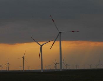 """""""海上风电+海洋牧场""""模式是否具有发展潜力?"""