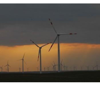 """""""海上风电+海洋牧场""""模式是否具有发展潜力?农"""