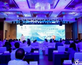 中国石化力争2025年实现经营<em>天然气总量</em>1200亿方