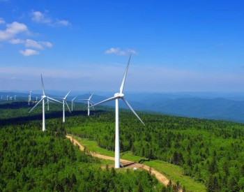 武钢:绿色经济的新未来看这里