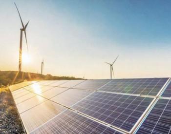 全国碳市场已至,资本投资热情升温,新能源行业如何把握机遇?