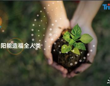 担当、创新、可持续,天合光能发布《2019-2020年