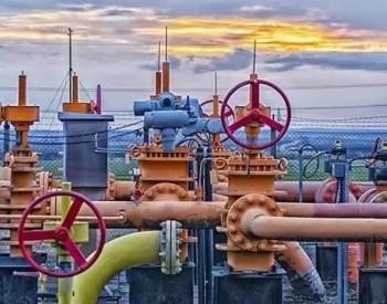 """海南主要能源品种消费量""""升降各半"""" 天然气消费量同比增长13.7%"""