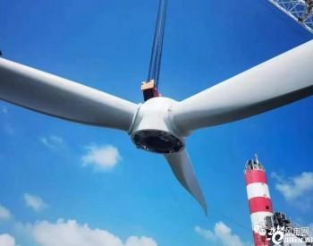 中广核浙江嵊泗5#6#项目的最后一台风机安装完成