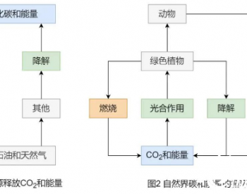 """涨知识了!为什么说生物质能是""""零碳""""能源"""