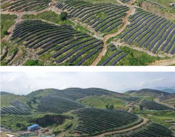 """贵州关岭:""""光伏+""""模式 为发展注入绿色新动力"""