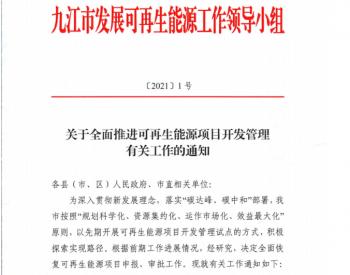 暂停近4个月后,江西九江市全面恢复新能源项目审
