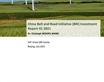 """报告速递:2021上半年""""带路""""倡议下无煤炭项目投资"""