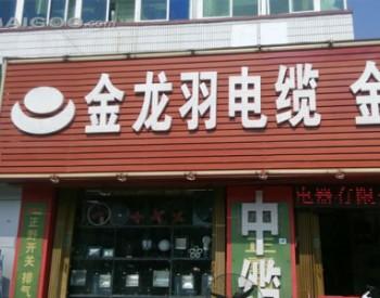 金龙羽拟3亿跨界投资固态电池领域 股价四日上涨46