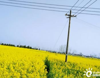 电力公司在农村栽电杆,占用农田,农民能否获得一