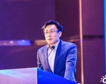 光伏行业协会刘译阳:阿盟可再生能源发展潜力巨大,中国光伏助力阿盟能源转