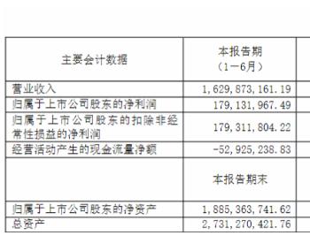 利润暴涨432.16%还嫌少?<em>安彩高科</em>被投资者提问道出光伏难