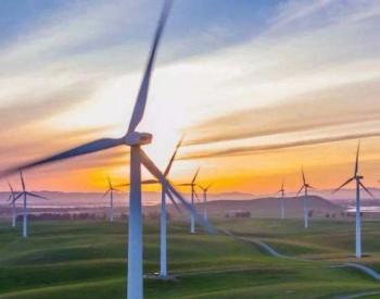 电气风电2021年上半年营收同比增加117.34% 净利同