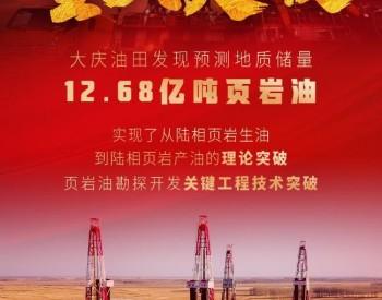 重大突破!我国发现预测地质储量12.68亿吨页岩油
