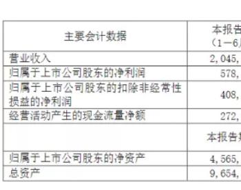 海南矿业进军锂电材料领域