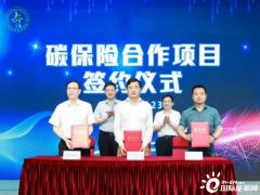 """中国太保为实现上海氢能""""百座站、千亿产值、万辆车""""的目标保驾护航"""