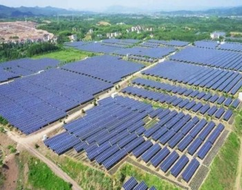 林洋能源上半年净利5.44亿,新能源板块接连签订重