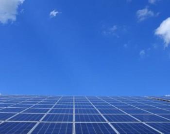 多晶硅业务量价齐升 特变电工上半年净利31亿