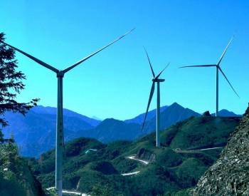 """不能让老实人吃亏:政府要识别风电圈的装备产业真""""假""""投资"""
