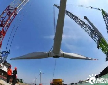 浙能嘉兴1号海上风电项目年底前有望全容量并网发