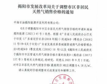广东省揭阳市发展改革局关于调整市区非居民<em>天然气销售价格</em>的通知