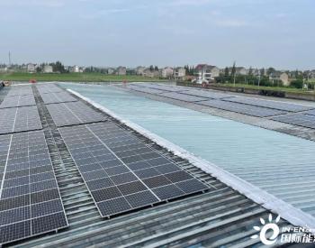 """年减碳量可达190吨,浙江平湖新埭屋顶光伏发电项目助力""""环境美""""建设"""