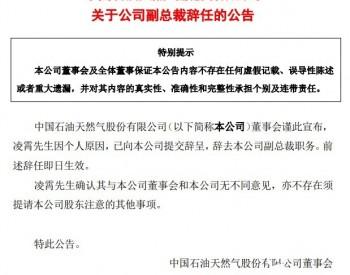 因个人原因  凌霄辞任中国石油副总裁