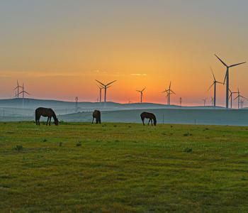 64项整改措施!中央批国家能源局未将<em>生态环境</em>保护摆上应有高度!
