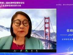 全球绿色发展联盟会长张晓枫:美国重返巴黎协定 (4播放)