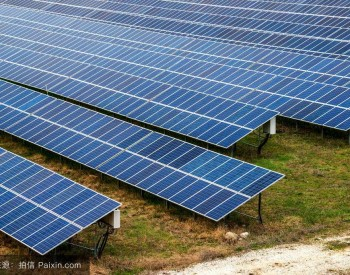 """金融助力温州绿色能源发展,浙江温州市推出首个""""碳易贷""""产品"""