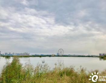 让塞上江南变得更美:宁夏持续推进黄河流域生态保