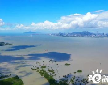 增设应对气候变化专章,广东深圳生态环保条例有何